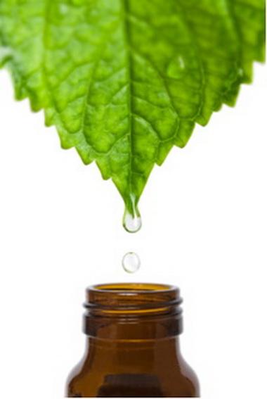 Гомеопатия и натуротерапия