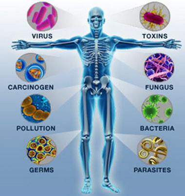 Стимулирование иммунитета